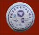 "Шэн (зеленый) Пуэр ""Special Beeng Cha"", Cake 100 гр., 2007г"